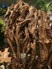 This intricate bit of natural wood stands higher than me, got an image of an old man in there somewhere if you look at it correctly - and that's exactly why I didn't include my face in the image.