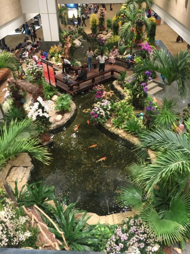The orchid display at Singapore airport taken from the floor above.